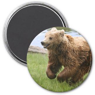 Funcionamiento del oso de Brown Imán Redondo 7 Cm