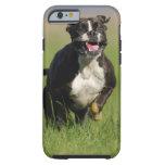 Funcionamiento del perro funda de iPhone 6 tough