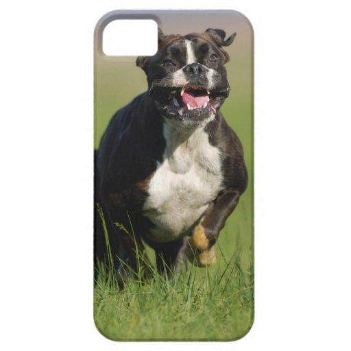 Funcionamiento del perro iPhone 5 funda