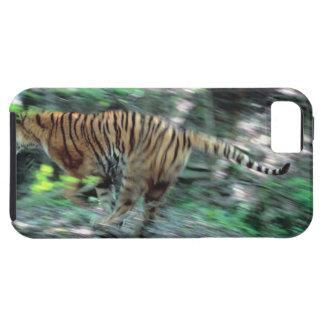 Funcionamiento del tigre funda para iPhone SE/5/5s