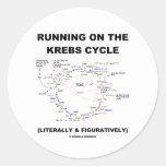 Funcionamiento en el ciclo de Krebs (humor de la c Etiqueta