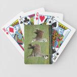 Funcionamiento gris de las alpacas baraja cartas de poker