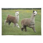 Funcionamiento gris de las alpacas manteles