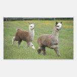 Funcionamiento gris de las alpacas pegatina rectangular