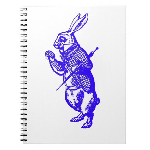 Funcionamiento tarde en cuaderno azul