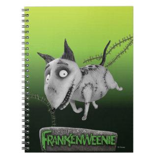 Funcionamiento vivaracho notebook