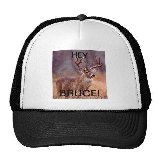 """¡FUNCIONARIO! ¡""""EY gorra del camionero de BRUCE""""!"""