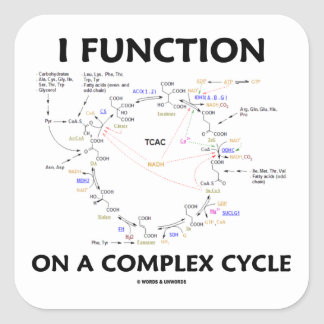 Funciono en un ciclo complejo (el ciclo de Krebs) Pegatina Cuadrada