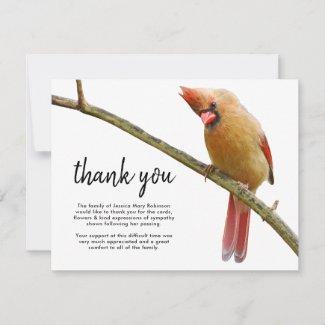 Funeral Thank You Note | Cardinal Bird