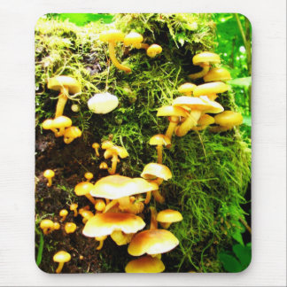 Fungal Mouse Pad