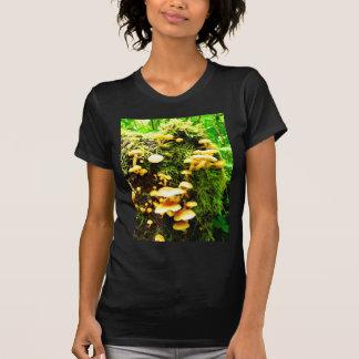 Fungal Shirt