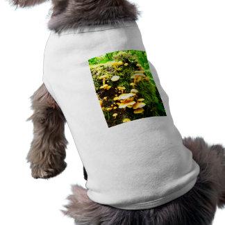 Fungal T-Shirt