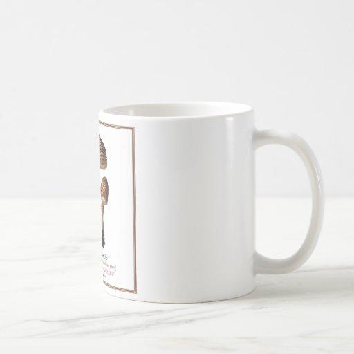 fungi #6 mugs