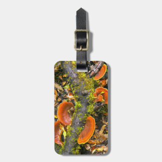 Fungi Growing On Branches, The Knysna-Amatole Luggage Tag