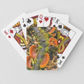 Fungi Growing On Branches, The Knysna-Amatole Playing Cards
