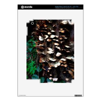 Fungi iPad 3 Case Decal For iPad 3