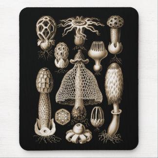 Fungi Mouse Pad