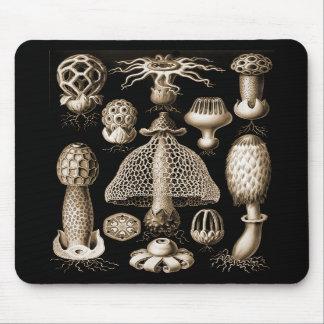 Fungi Mousepads