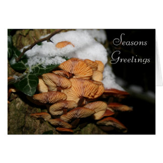 Fungi SeasonsGreetings Stationery Note Card
