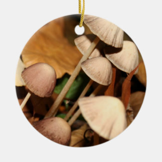 FUNGI tree Ornament #1