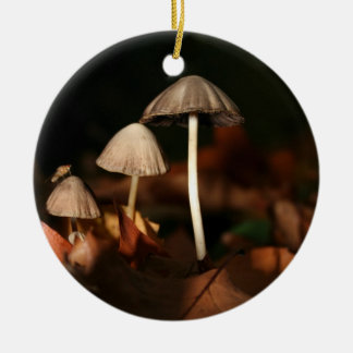 FUNGI tree Ornament #5