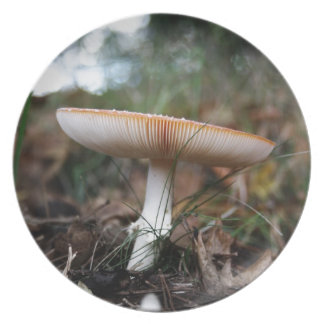 Fungus Party Plates