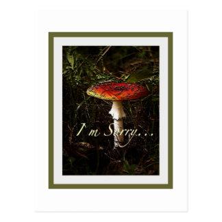Fungus Postcard