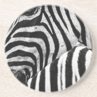 Funky Black and White Zebra Coaster