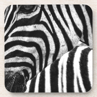 Funky Black and White Zebra Drink Coaster