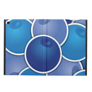 Funky blueberry powis iPad air 2 case