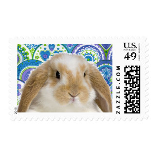 Funky Bunny Stamp
