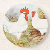 Funky Chickens Sandstone Coaster