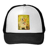 Funky Chuck Trucker Hats
