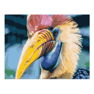 Funky Colorful Hornbill Tropical Bird Art Postcard
