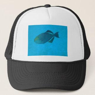 Funky Fish Cap