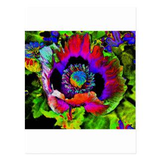 Funky Flower Postcard