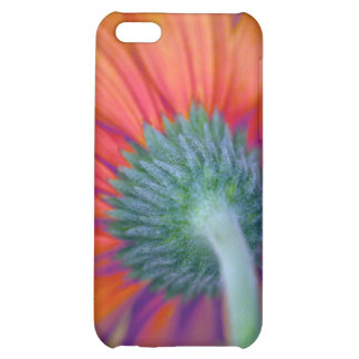 Funky Gerbera iPhone 5C Case