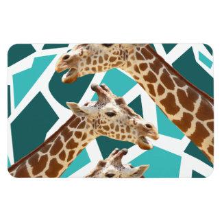 Funky Giraffe Print Teal Blue Wild Animal Pattern Magnet