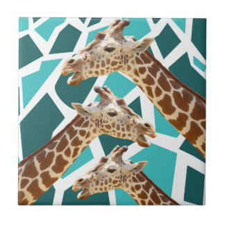 funky giraffe espana