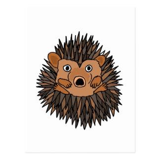 Funky Hedgehog Art Design Post Card