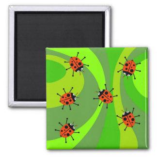 Funky Ladybugs Magnet
