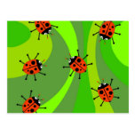 Funky Ladybugs Post Card