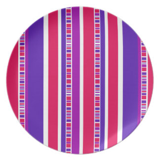 Funky Modern Stripes in Hot Pink and Purple Melamine Plate