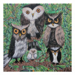 Funky Owls Poster