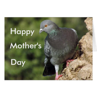 Funky Pigeon Mother's Day Cards