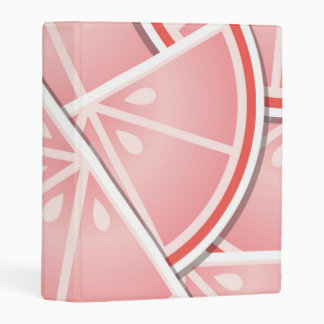 Funky pink grapefruit wedges mini binder