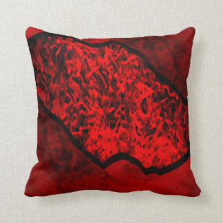 Funky Red Pillow