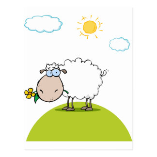 Funky Sheep With Flower In Mouth Postcard