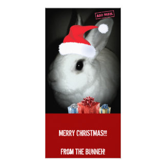 FUNNEH BUNNEH CHRISTMAS PHOTO CARDS