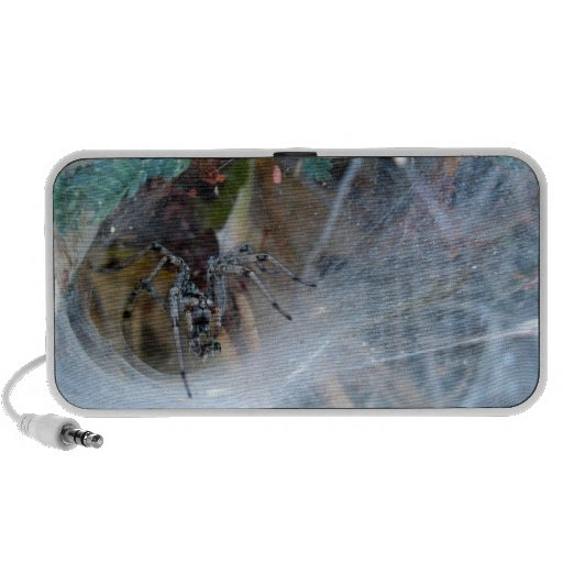 Funneling Wolf Spider ~ Kimberly P-Chadwick Mp3 Speakers